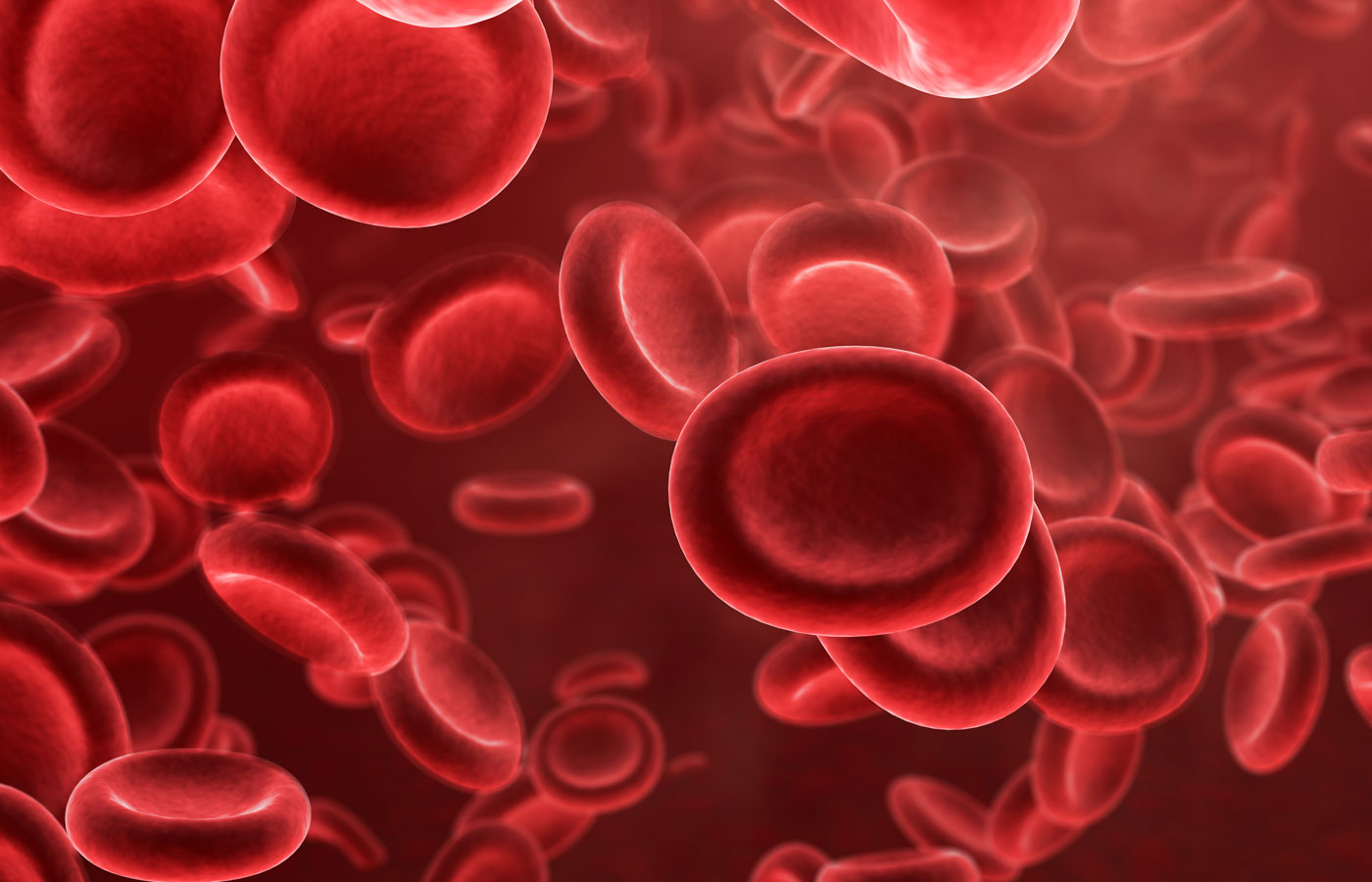 3D render of Red Blood cell background